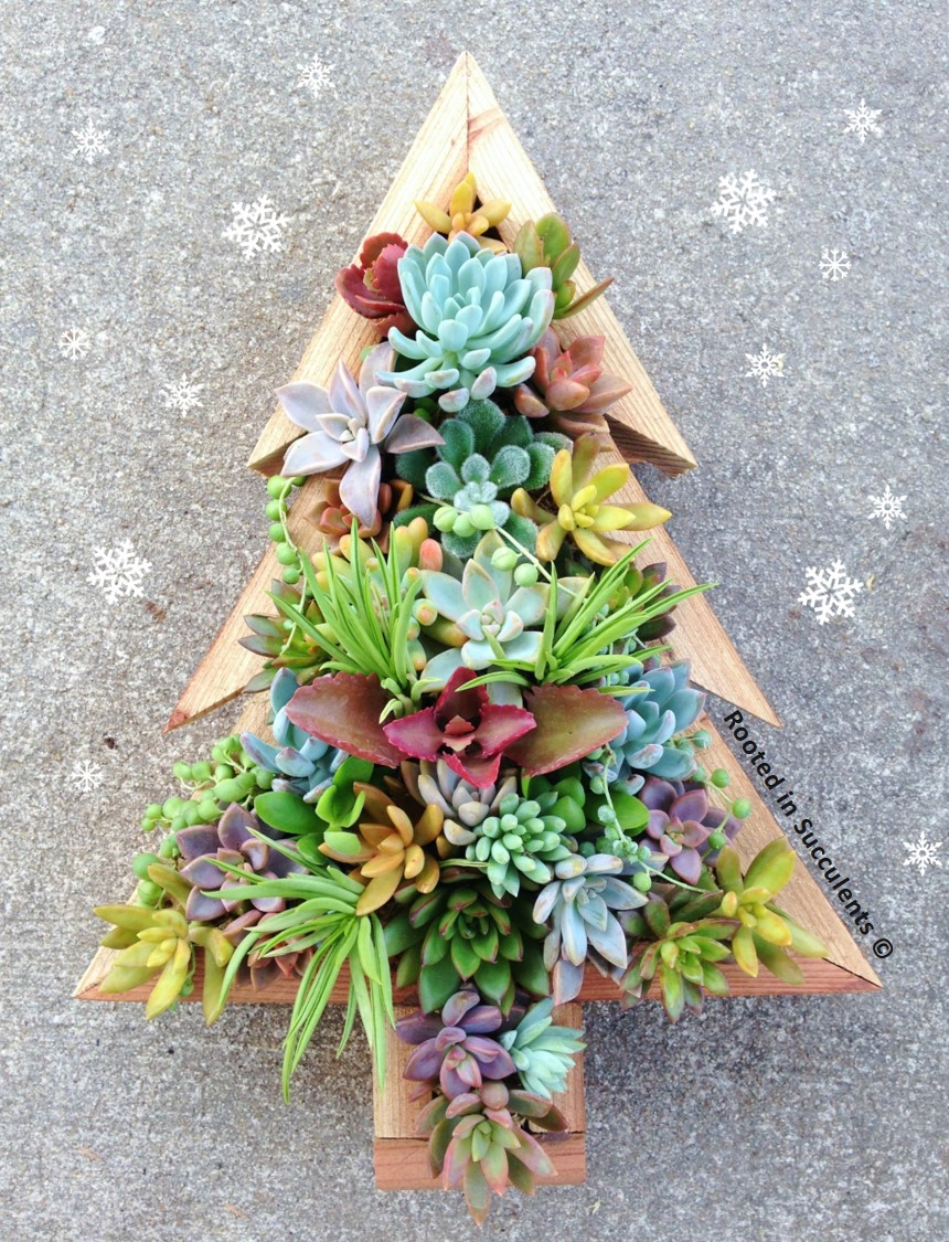 SUCCULENT CHRISTMAS TREE PLANTER